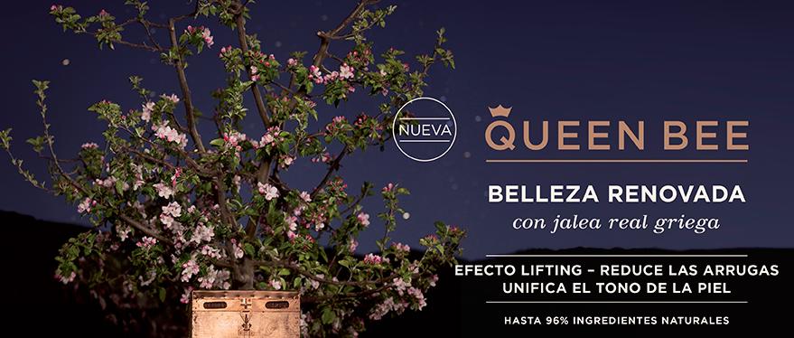 Nueva Queen Bee Apivita